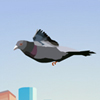 By controlling the motion of a dove need to attack people. Collecting Airmail and glasses.