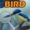 Spot the Difference-Bird A Free Customize Game