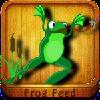 Frog Feed