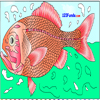 Orange Roughy Coloring A Free Customize Game