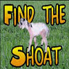 Find the Shoat v1.1 A Free Puzzles Game