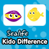 Kido Difference - Sea Life