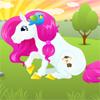 Pony Hairstylist