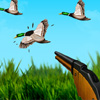 Duck Hunter A Free Shooting Game