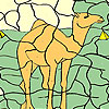 Camel in the desert coloring