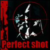Perfect Shot A Free Action Game