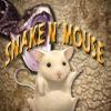 Snake n