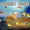 Queen Fish A Free Action Game