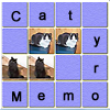 Memory game in which you have to test your short term memory. Try to pass all levels. Practice and improve your memory.