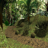 Race in the Jungle A Free Action Game