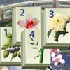 Csodálatos tó Mahjong