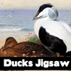 Ducks Jigsaw A Free BoardGame Game