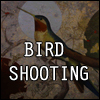 BIRD SHOOTING A Free Shooting Game