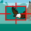 Bird Chase A Free Action Game