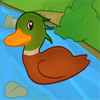 Joice Duck A Free Action Game