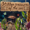 Hidden Treasures Of The Sea