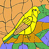 Yellow sparrow coloring