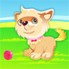 Rex is the name of this cute puppy. In this animal dressup game for girls, you have the opportunity to dress Rex as you wish. Select the haircut and hair color, add accessories near his house and of course don`t forget about the most wanted toys. Have fun playing this game for girls. Good Luck.