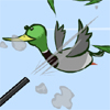 DuckNCover A Free Sports Game