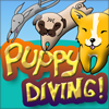 Puppy Diving A Free Action Game