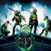 Play Ninja Turtles Hidden Stars