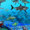 Underwater Fish Hidden Objects A Free Puzzles Game