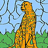 Wild leopard coloring