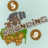Numbers and Cannons: Rounding