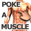 Poke-A-Muscle A Free Sports Game