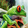Crack frogs hidden numbers Game. Find the hidden numbers and go to the next level.
