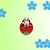 Ladybug and flowers
