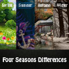 Your task in this game is to discover all differences in the spring, summer, autumn and winter images. Try not to make mistakes; with every wrong click, you will lose 5 seconds.