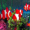 Deep sea fishes hidden numbers