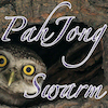 PahJong Swarm   The Father of All MahJong style games! That`s where the PAH comes from. Match the birds, click-click-chirp, click-click-chirp, and prepare for another Swarm. Exercize for your mind; improving Size, Color, Orientation, and Migration awareness. Left Brain meets Right in an IQ Aviary.  Or, just sit back, close your eyes, and enjoy the peaceful chirping birds.