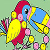 Pearl parrot coloring