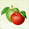 Apple A Free Education Game