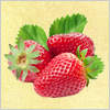 Strawberry A Free Education Game