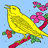 Yellow hungry canary coloring A Free Customize Game