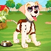 Use mouse click to change dresses and accessories on puppy.
