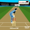 Cricket-Master Blaster A Free Sports Game
