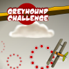Greyhound Challenge A Free Action Game