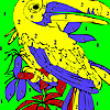 Old parrot coloring