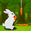 Have fun with Little Rabbit.. Your goal in this game is to save the carrot form the rabbit. Move the carrot away from the rabbit whenever it jumps. Your score will be increase as long as you save each carrot. Have Fun!