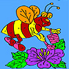 Bee honey collects coloring