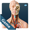 Play Anatomicus Anatomy Game