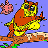 Bird and owl in the woods coloring