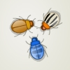 BugTwoThree A Free Puzzles Game