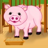 Baby Piggy Care A Free Puzzles Game