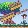 Ninja Training Worlds A Free Action Game