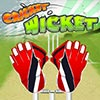 Cricket WIcket A Free Sports Game